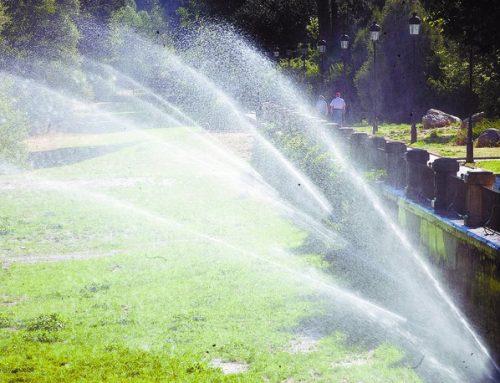El PARTIDO CASTELLANO (PCAS) reclama al Ayuntamiento moderar el riego de parques y jardines de Burgos.