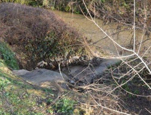 El PARTIDO CASTELLANO  (PCAS) denuncia los vertidos al rio Guadarrama en Villaviciosa de Odón