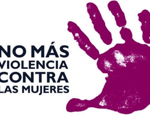 El PARTIDO CASTELLANO- TIERRA COMUNERA (PCAS-TC) ante el 25 de noviembre