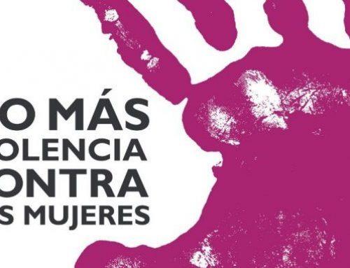 El PARTIDO CASTELLANO- TIERRA COMUNERA (PCAS-TC) reclama mayor implicación de las instituciones en la lucha contra la violencia machista